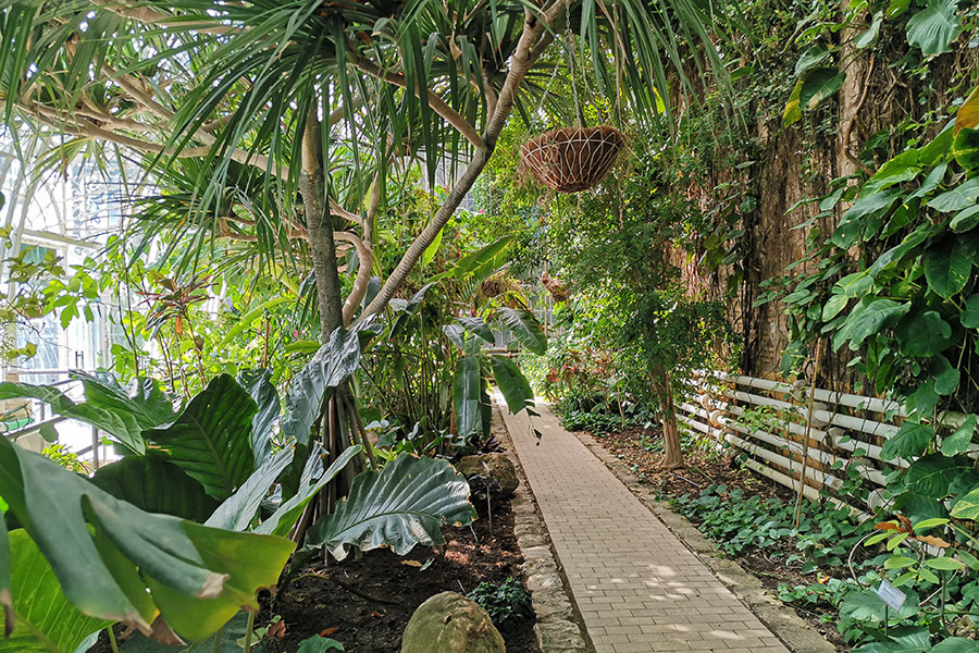 Ботанический сад Валенсии