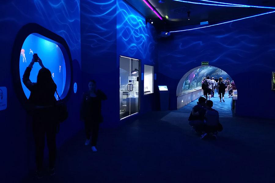 Океанографический центр в Валенсии